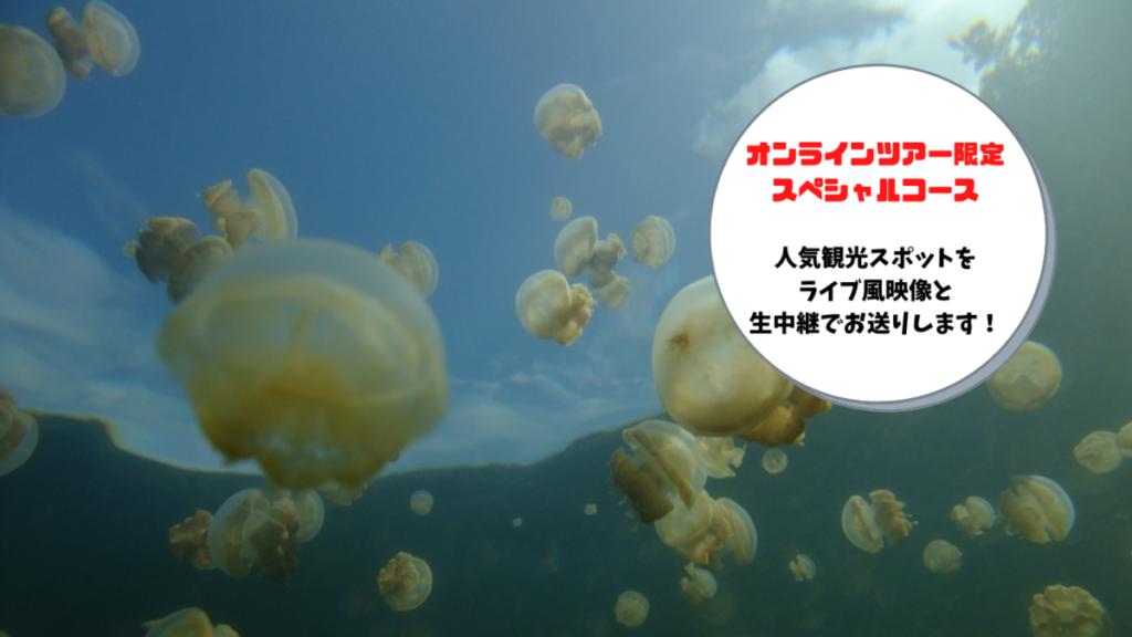 オンラインツアー紹介